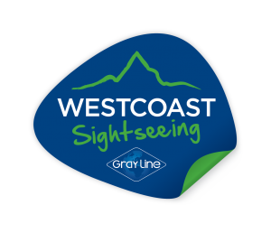 WCSS_Logo_COLOUR_Shape